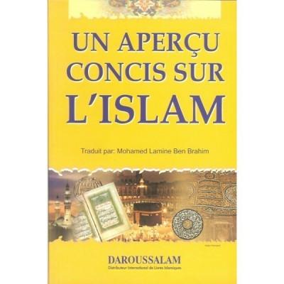 Un apercus concis sur l'islam